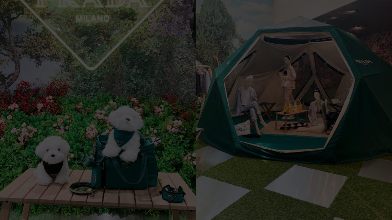 プラダ アウトドア「ガーデン」