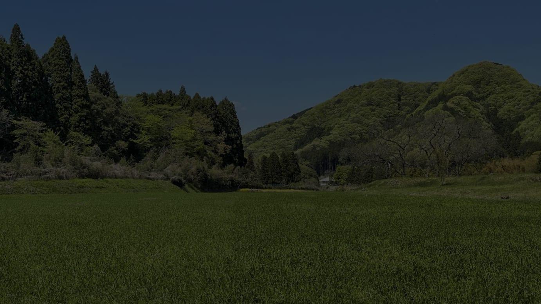 スノーピーク直営キャンプフィールド建設予定地(現況)