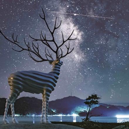 《White Deer(Oshika)》(2017)©Reborn-Art Festival 2017 Image by Kieko Watanabe(Pontic Design Office)
