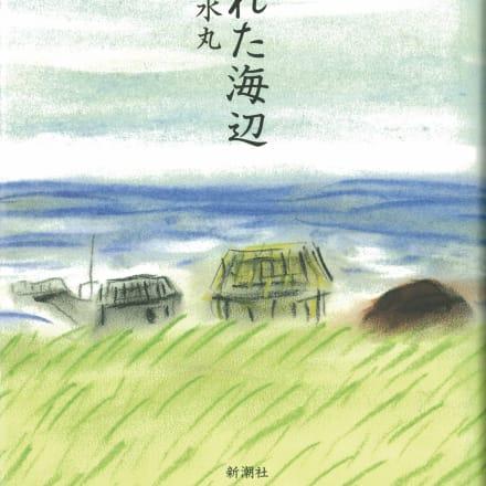 「荒れた海辺」新潮社  1993年
