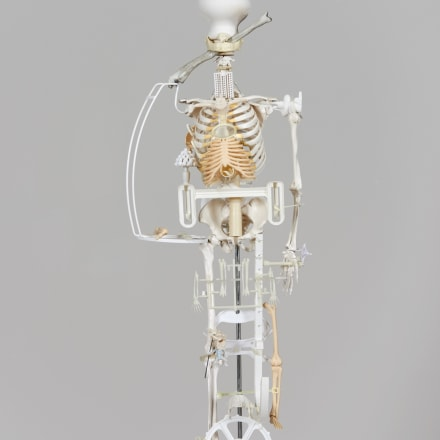 Splash and Flakes( Skeleton/2017 ) #1, 2017, Plastic, steel, and wooden objects, skeleton models, 92 x 32 x 30 cm courtesy Eslite Gallery Copyright Teppei Kaneuji.