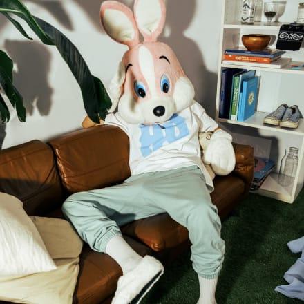 HONESTBOY®のアイコンであるウサギ