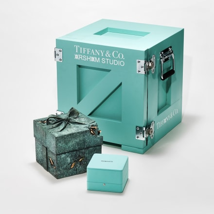 Image by Toby McFarlan Pond for Tiffany & Co.