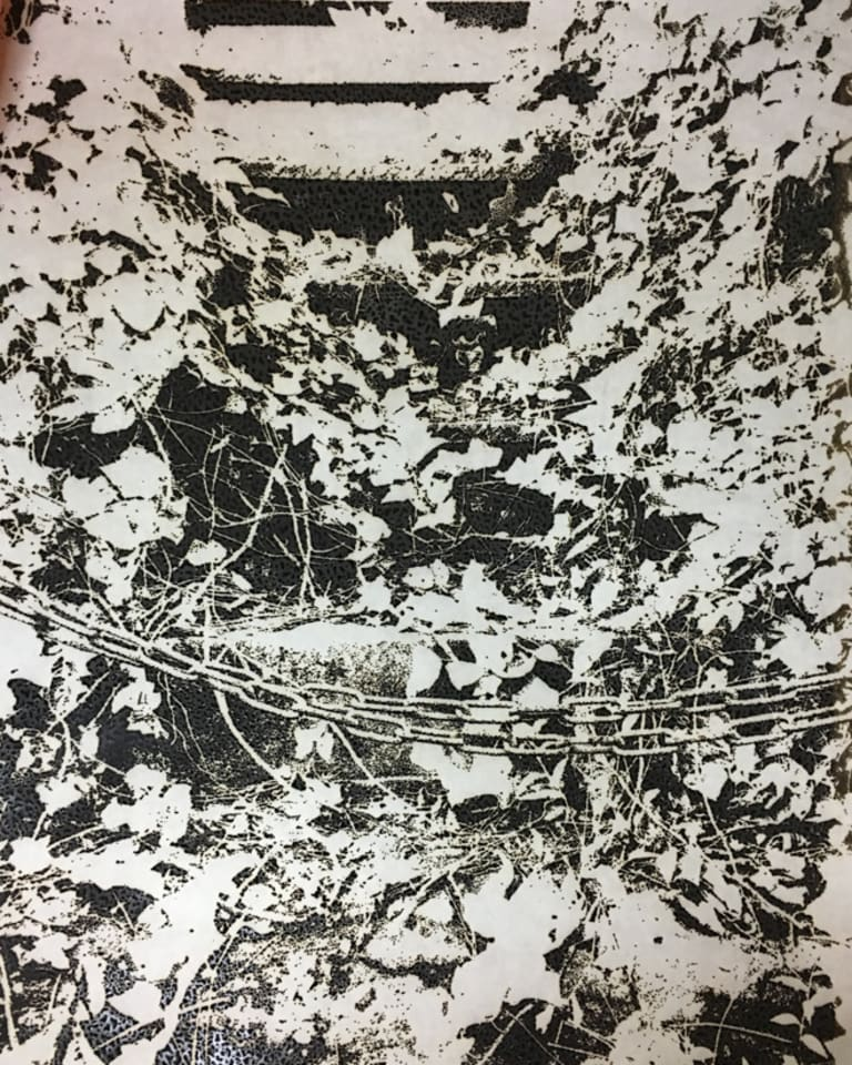市川孝典/untitled(wood land)/2016/ burnt paper/ H2046mmxW1326mm