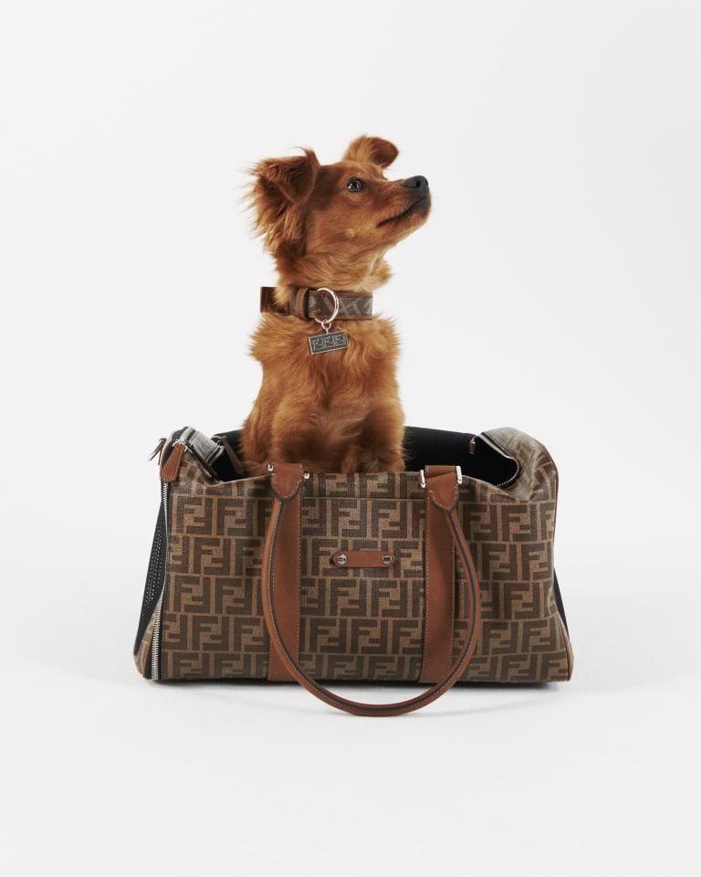 FENDI Pet Travel Line