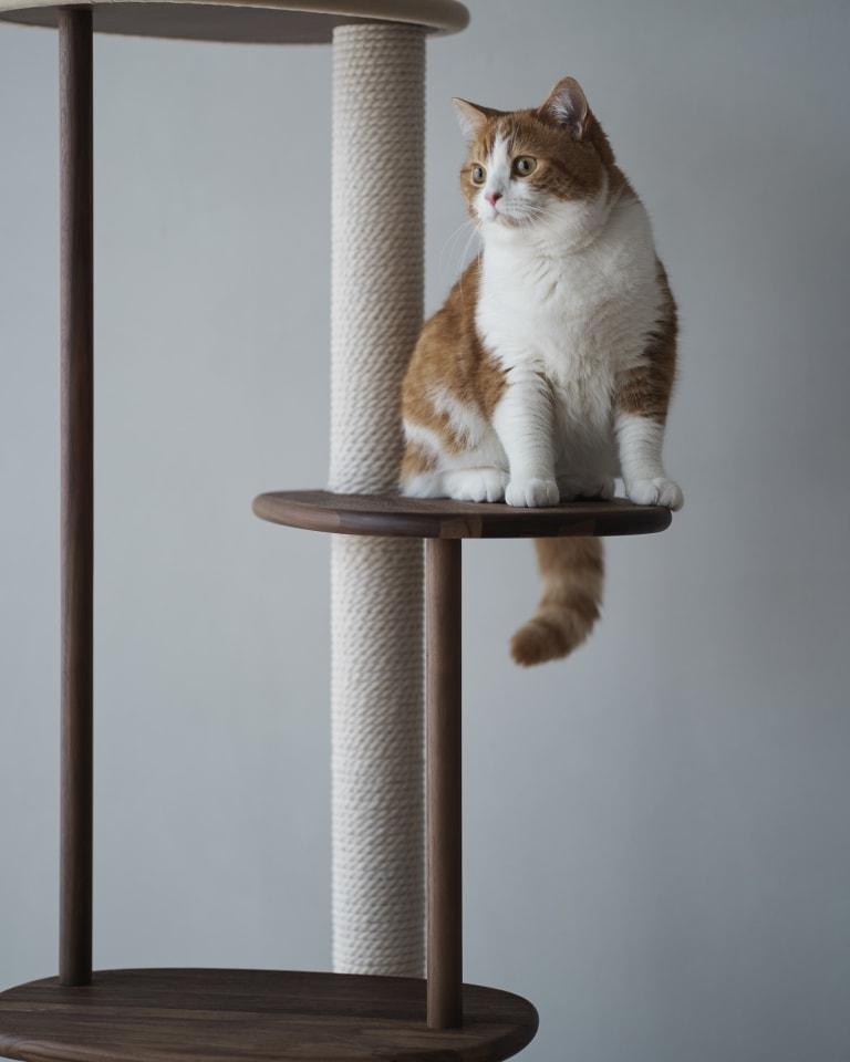 ウォールナットコレクション「KARIMOKU CAT TREE 」