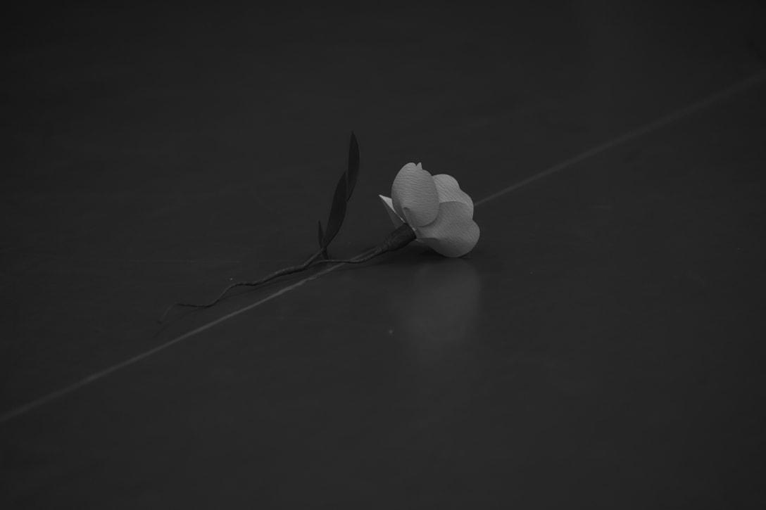 Image by N.HOOLYWOOD