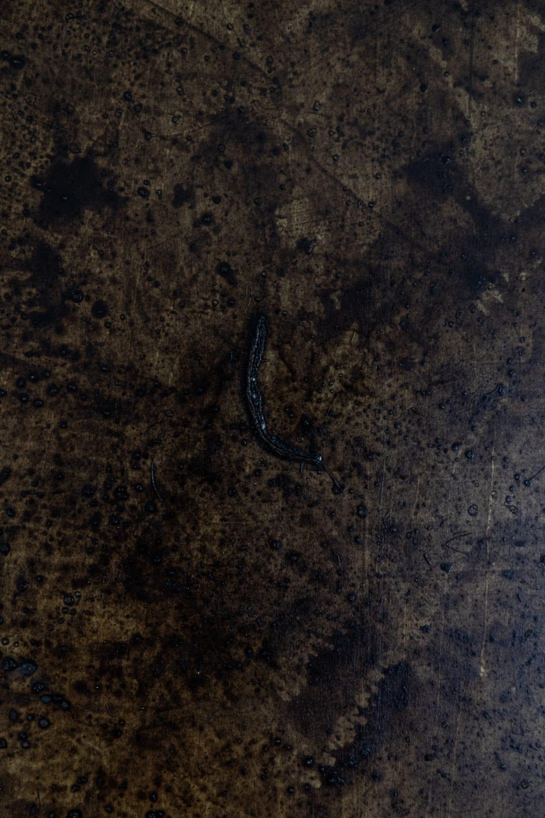 ベニヤ板の上に、磯崎自身の血液が用いられている。血液が使われているため、独特な匂いと自然光に左右される空間内部で作品を見ることになる。