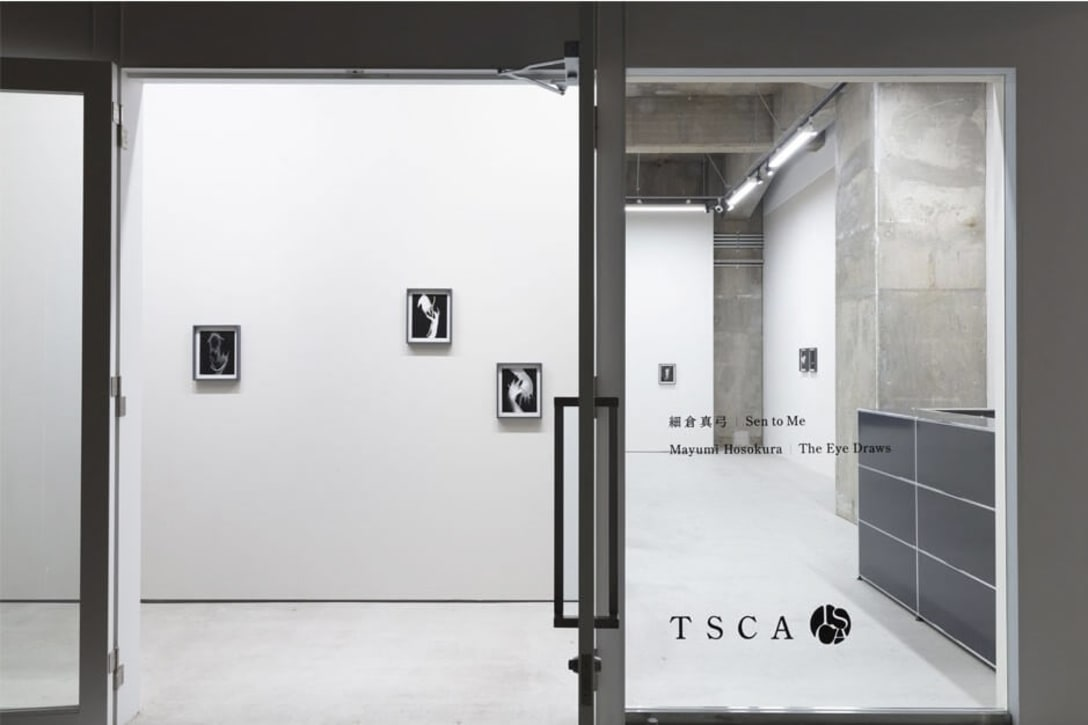 "Installation view of Mayumi Hosokura ""Sen to Me,"" photo by Shu Nakagawa. Courtesy of Takuro Someya Contemporary Art."