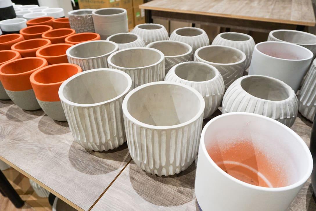 鉢物は中国やベトナム、カンボジアから輸入 Image by FASHIONSNAP