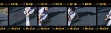 malamute 2015SS 東京コレクション 画像9/14