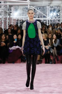 Dior 2015SS Couture パリコレクション 画像12/54