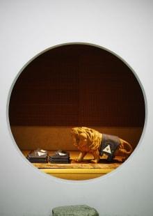 THEモンゴリアンチョップス 2016SS 東京コレクション 画像6/27