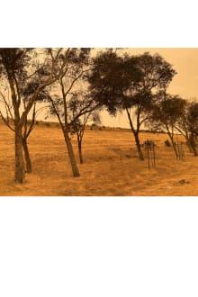 COACH 2021SS ニューヨークコレクション 画像25/60