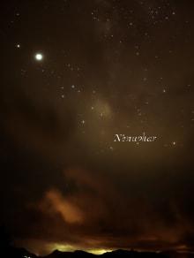N'enuphar 2021SSコレクション 画像42/45