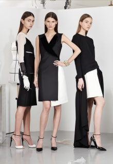 Christian Dior 2013-14AW Pre-Collection パリコレクション 画像8/22