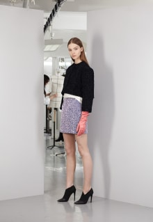 Christian Dior 2013-14AW Pre-Collection パリコレクション 画像18/22