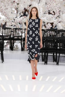 Dior 2014-15AW Couture パリコレクション 画像46/62