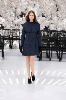 Dior 2014-15AW Couture パリコレクション 画像53/62