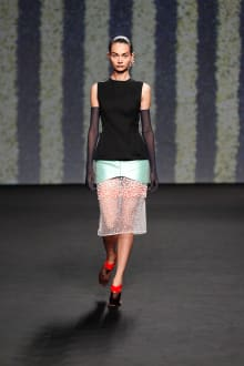 Christian Dior 2013-14AW Couture パリコレクション 画像3/53