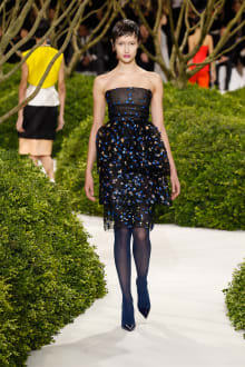 Christian Dior 2013SS Couture パリコレクション 画像37/47