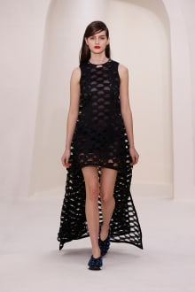 Dior 2014SS Couture パリコレクション 画像22/52
