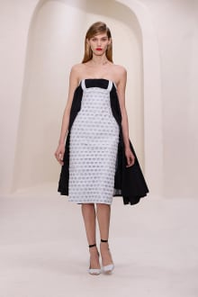 Dior 2014SS Couture パリコレクション 画像46/52
