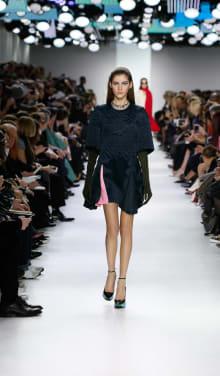 Dior 2014-15AW パリコレクション 画像9/55