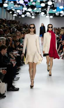 Dior 2014-15AW パリコレクション 画像10/55
