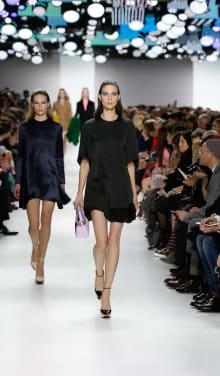 Dior 2014-15AW パリコレクション 画像14/55