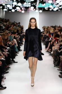 Dior 2014-15AW パリコレクション 画像15/55