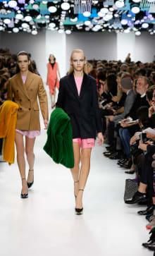 Dior 2014-15AW パリコレクション 画像16/55
