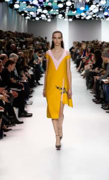 Dior 2014-15AW パリコレクション 画像20/55
