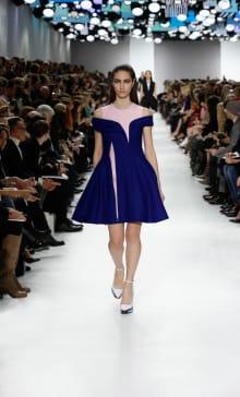 Dior 2014-15AW パリコレクション 画像22/55