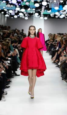 Dior 2014-15AW パリコレクション 画像41/55