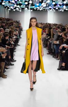 Dior 2014-15AW パリコレクション 画像45/55