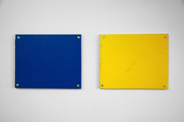 ライアン・ガンダー 「Investigation #  70 - One blue, one yellow」 2009年  © Ryan Gander Courtesy of TARO NASU Image by G-tokyo実行委員会