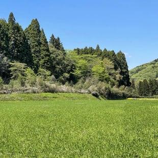 スノーピーク 栃木県鹿沼 キャンプ場