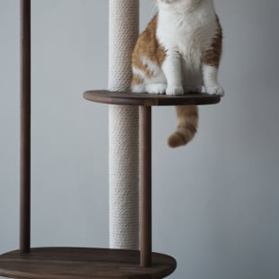 カリモク家具 RINN 猫