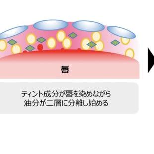 新オイルコントロール技術を採用したハイブリット処方のメカニズム図